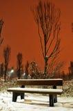 Zima w parku przy nocą Zdjęcia Royalty Free