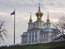 Zima w Petershof w Rosja (Petersburg) Obraz Royalty Free