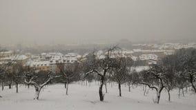 Zima w Praga Obraz Royalty Free
