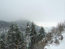 Zima w Rasnov Zdjęcia Royalty Free