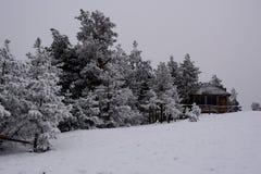 Zima w Serbia Zlatibor 2017 Obraz Royalty Free