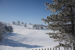 Zima w Serbia Zlatibor 2017 Fotografia Stock
