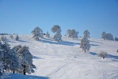 Zima w Serbia Zlatibor 2017 Obrazy Stock