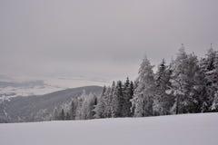 Zima w Serbia Zlatibor 2017 Zdjęcie Stock