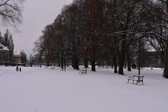Zima w Szwecja Obraz Royalty Free