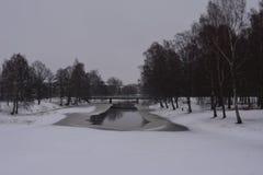 Zima w Szwecja Fotografia Stock