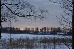 Zima w Szwecja Fotografia Royalty Free