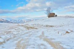 Zima w Transylvania Rumunia Fotografia Royalty Free