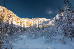 Zima w ałunach Zdjęcie Stock