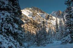 Zima w ałunach Zdjęcie Royalty Free