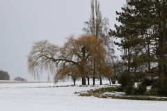 Zima w wsi w Niemcy Obrazy Stock