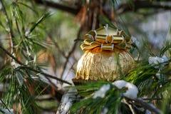 Zima wakacje dekoracji pojęcie: Włoska czekoladowa piłka zawijająca w kruszcowej złocistej folii i nakrywająca z złotymi faborkam fotografia royalty free