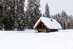 Zima wakacje dom zdjęcie royalty free