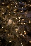 Zima wakacje zieleni choinka z światłami Fotografia Stock