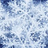 Zima wakacji pojęcie Tło zdjęcie stock