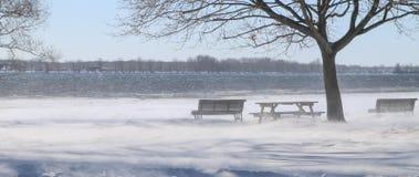 Zima wiatr obok rzeki Zdjęcie Royalty Free