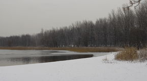 Zima widok brzegowy jezioro Pogoria obraz stock