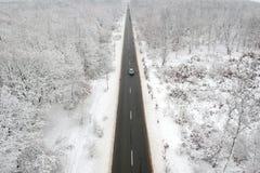 Zima widok droga po środku lasu zdjęcia royalty free