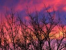 Zima wieczór niebo Zdjęcia Royalty Free