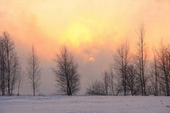 Zima wschód słońca Zdjęcia Royalty Free