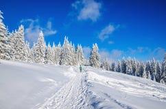 Zima wycieczkuje drogę w górach z śniegiem Obraz Royalty Free