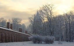 Zima wymarzony stary park Obraz Stock