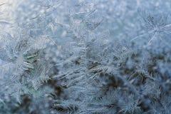 Zima wzór lodowi kryształy na szkle zdjęcia stock