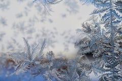 Zima wzór lodowi kryształy na szkle obraz stock