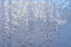 Zima wzór lodowi kryształy na szkle obrazy stock