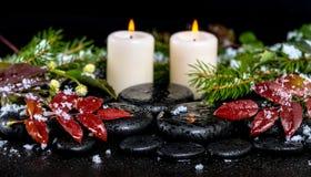 Zima zdroju pojęcie wiecznozielone gałąź, czerwień opuszcza z kroplami, Obraz Royalty Free