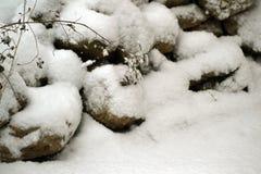 Zima, zima Zdjęcie Stock