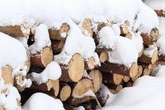 zima, zimno, snowing Las piłujący dla przetwarzać Brogujący w stosie śnieg nalewa obraz stock