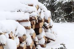zima, zimno, snowing Las piłujący dla przetwarzać Brogujący w stosie śnieg nalewa fotografia royalty free