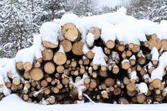 zima, zimno, snowing Las piłujący dla przetwarzać Brogujący w stosie śnieg nalewa zdjęcie royalty free