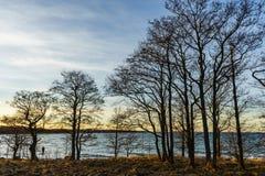 Zima zmierzch na morzu bałtyckim Zdjęcia Stock