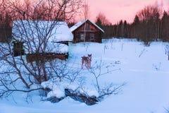 Zima zmierzch w starej myśliwy wiosce obrazy stock
