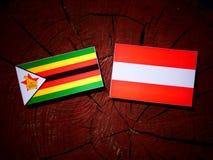 Zimbabwe flag with Austrian flag on a tree stump  Stock Photos