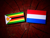 Zimbabwe flag with Dutch flag on a tree stump isolated Royalty Free Stock Images
