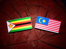 Zimbabwe flag with Malaysian flag on a tree stump isolated Royalty Free Stock Photography