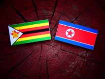 Zimbabwe flag with North Korean flag on a tree stump  Royalty Free Stock Image