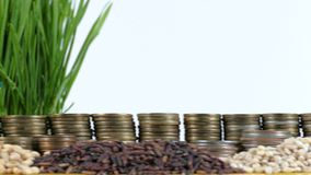Zimbabwe flag waving with stack of money coins and piles of wheat. And rice seeds stock footage