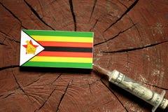 Zimbabwe flaga na fiszorku z strzykawki wstrzykiwania pieniądze fotografia royalty free