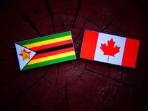 Zimbabwe flaga z kanadyjczyk flaga na drzewnym fiszorku odizolowywającym obraz royalty free