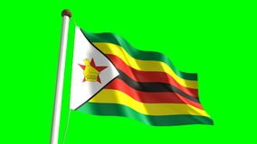Zimbabwean flag stock video footage