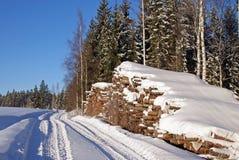 Zimmern Sie Protokolle durch Waldweg im Winter Lizenzfreie Stockbilder