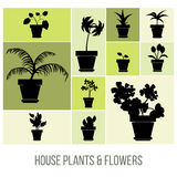 Zimmerpflanzen und Blumen in den Topf-Schattenbildern, Vektor-Illustration Lizenzfreie Stockbilder