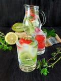 Zimna detox woda z organicznie owoc i jagodami Obraz Stock