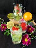 Zimna detox woda z organicznie owoc i jagodami Obrazy Royalty Free