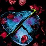 zimna miłość Obrazy Royalty Free