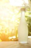 Zimna woda w butelce Fotografia Royalty Free
